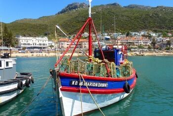 Traditional fishing boats, Cape Town, Western Cape
