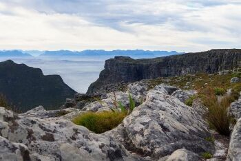 Table Mountain, Cape Town, Western Cape